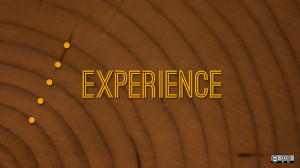 Does Experience Matter?